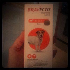 Other - Bravecto 9.9-22 lb